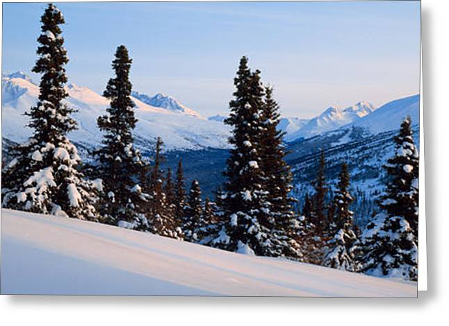 Winter Chugach Mountains Ak Greeting Card by Panoramic Images