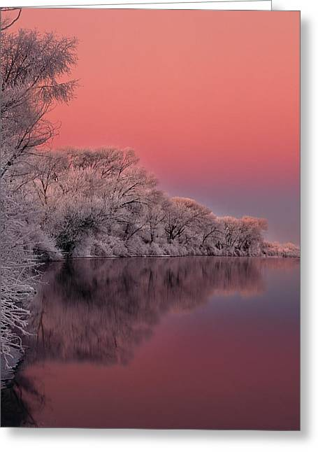 Winter Color Greeting Card by Leland D Howard