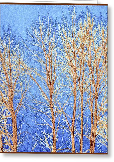 Winter Cottonwoods Abstract Greeting Card by Will Borden