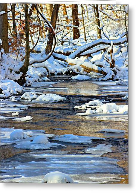 Greeting Card featuring the photograph Winter Creek by Candice Trimble