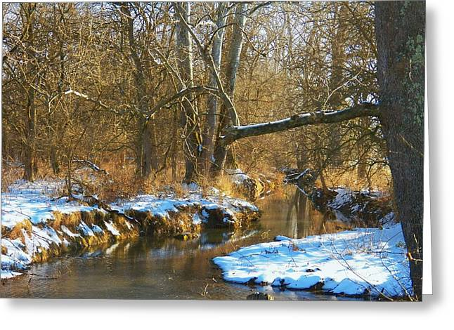Winter Creek Greeting Card by Joyce Kimble Smith