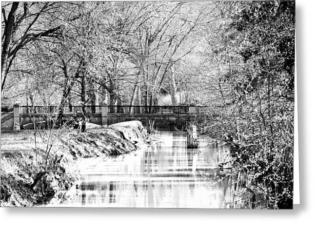 Winter Crossing Greeting Card by Lorna Rogers Photography