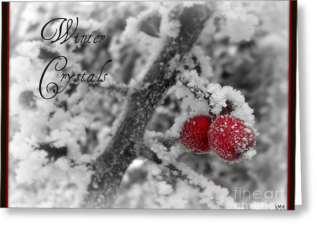 Greeting Card featuring the photograph Winter Crystals On Red by Heidi Manly