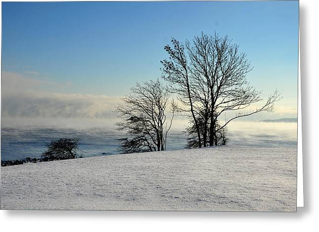 Greeting Card featuring the photograph Winter Day by Randi Grace Nilsberg
