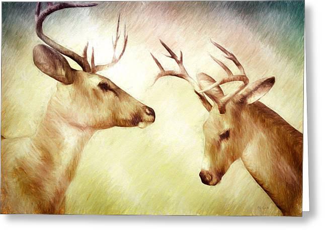 Winter Deer Greeting Card by Bob Orsillo