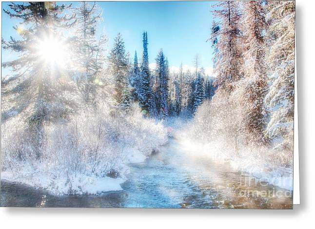 Winter Delight On Lolo Creek Greeting Card by Katie LaSalle-Lowery