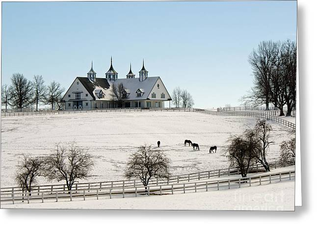 Winter Dream Greeting Card by Roger Potts