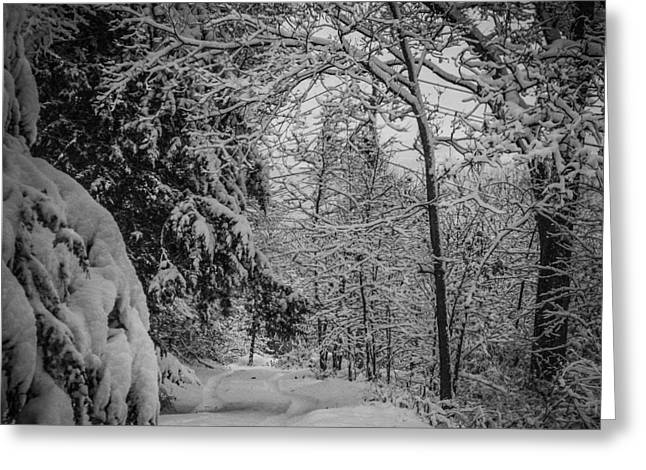 Winter Drive Greeting Card by Joe Scott