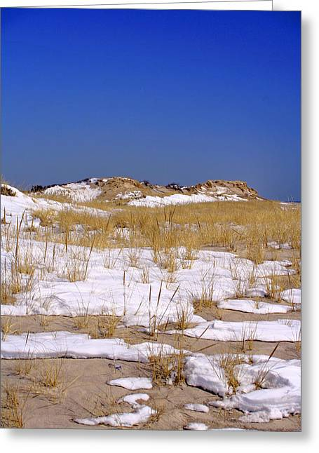 Greeting Card featuring the photograph Winter Dunes Fire Island by Karen Silvestri