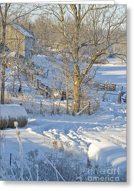 Winter Farm II Greeting Card by Jessie Parker