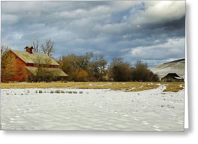 Winter Farm Greeting Card by Steve McKinzie