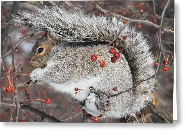 Winter Feast Greeting Card by Doris Potter