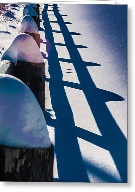 Winter Fence  Greeting Card by Douglas Pike