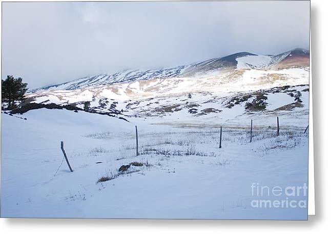 Winter Fence Greeting Card by Nabucodonosor Perez