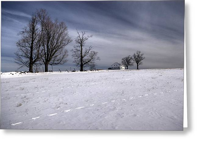 Winter Field Greeting Card