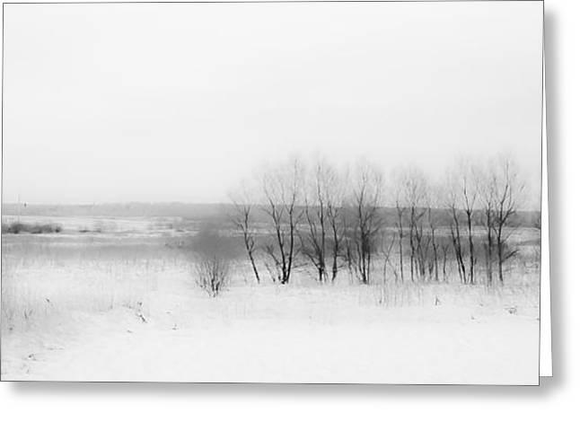 Winter Fields. Monochromatic  Greeting Card by Jenny Rainbow