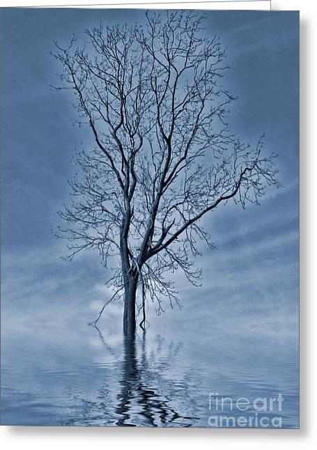 Winter Floods Painting Greeting Card by John Edwards