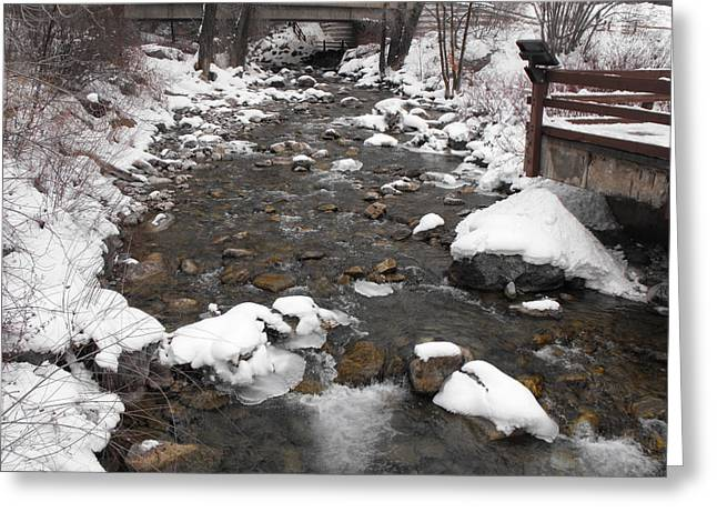 Winter Flow Greeting Card