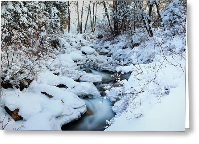 Winter Flow Greeting Card by Darryl Wilkinson