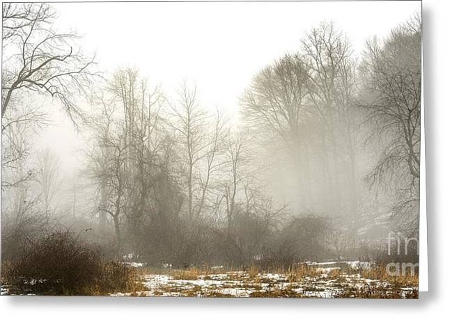 Winter Fog And Trees Greeting Card by Thomas R Fletcher