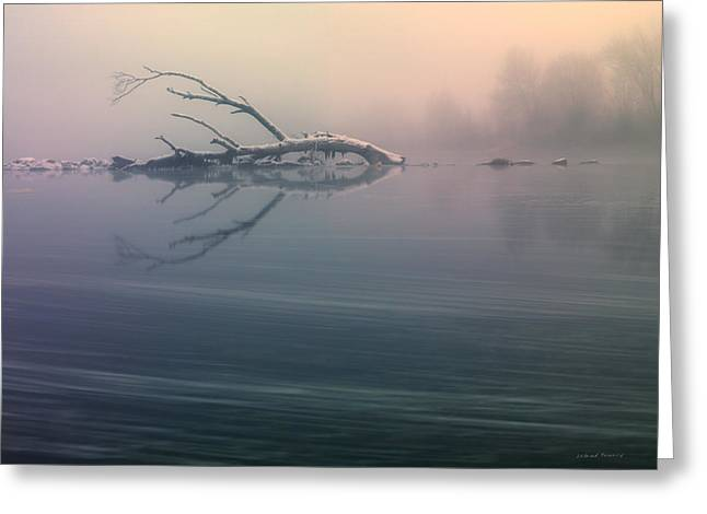 Winter Fog Greeting Card by Leland D Howard