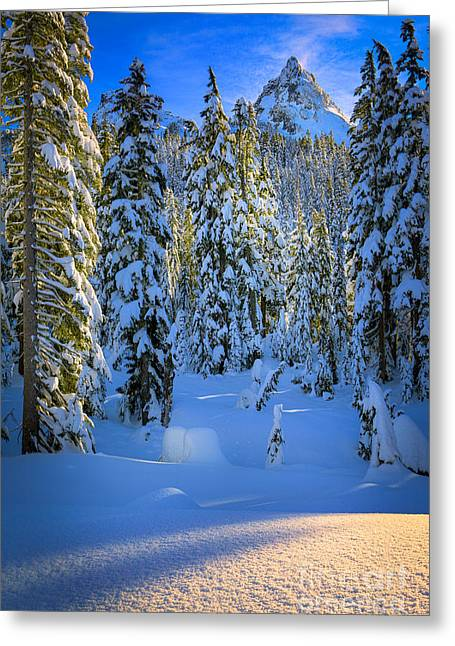 Winter Forest Greeting Card by Inge Johnsson