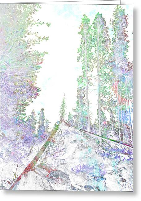 Winter Forest Scene Greeting Card by John Fish