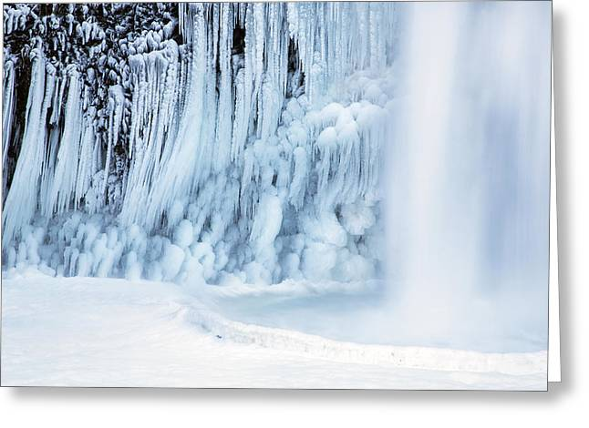 Winter Freeze Greeting Card