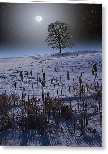 Greeting Card featuring the photograph Winter Glow by Larry Landolfi
