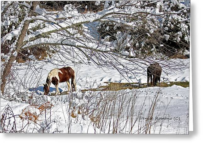 Winter Graze Greeting Card