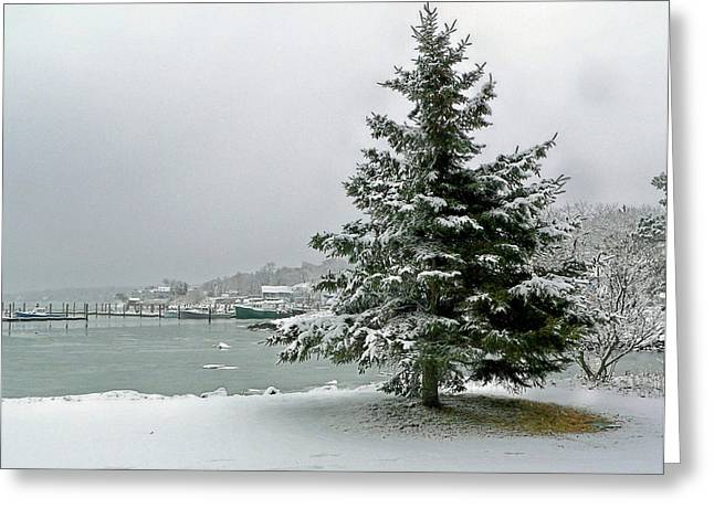 Greeting Card featuring the photograph Winter Harbor Scene by Janice Drew