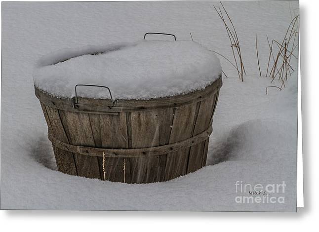Winter Harvest Greeting Card by Mitch Shindelbower