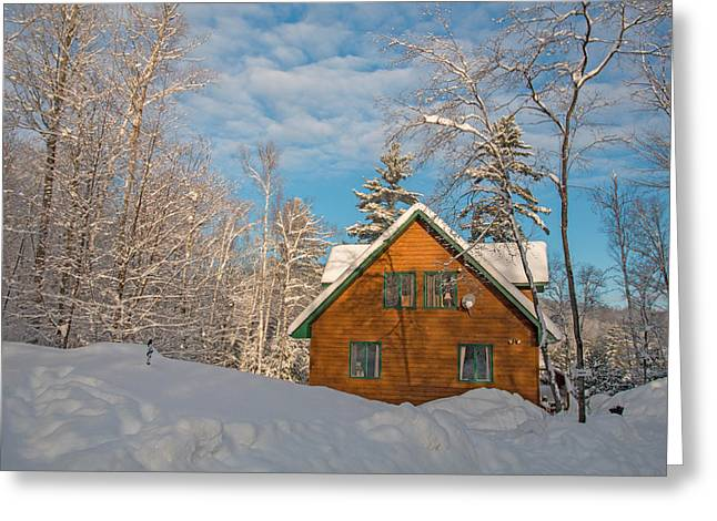 Winter Hideaway Greeting Card by Pat Speirs