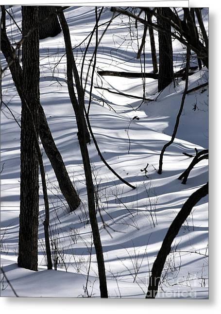 Winter Hillside Greeting Card by Fred  Sheridan