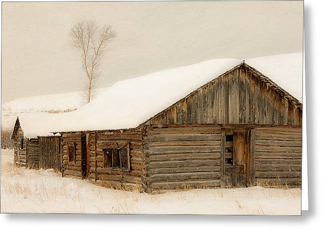 Winter Homestead Greeting Card by Gigi Embrechts