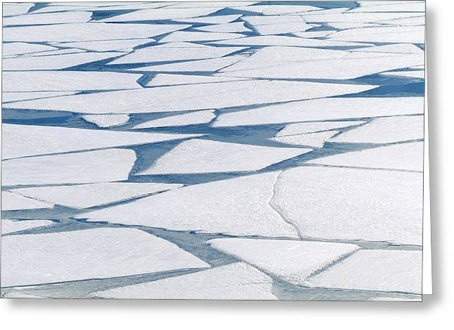 Winter Ice Layer On Portage Lake Greeting Card by Randy Brandon