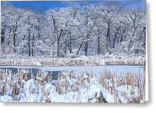 Winter, Illinois, Usa Greeting Card by Panoramic Images