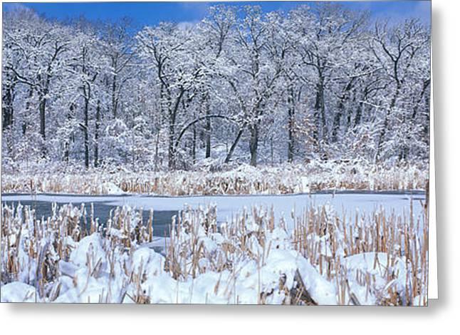Winter, Illinois, Usa Greeting Card