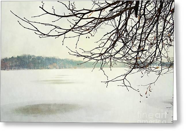 Winter Impressions IIb Greeting Card