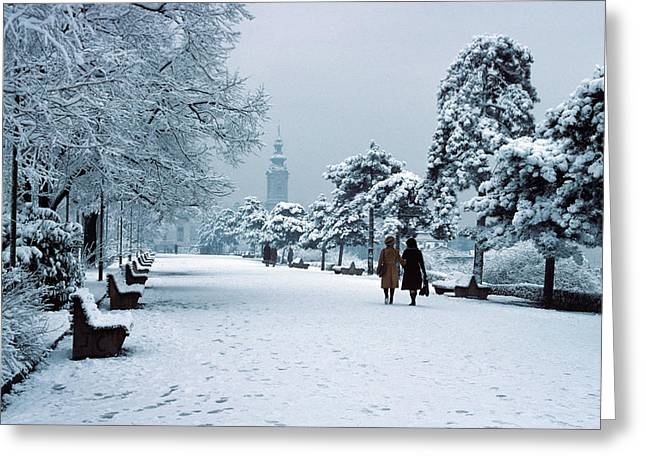 Winter In Belgrade Greeting Card