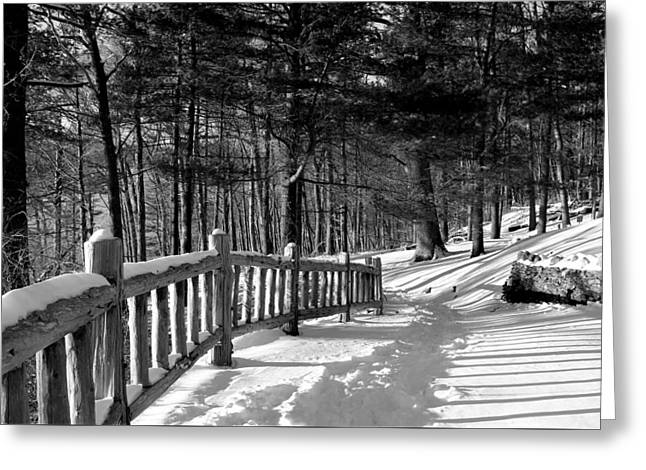 Winter In Gillette Castle State Park Greeting Card