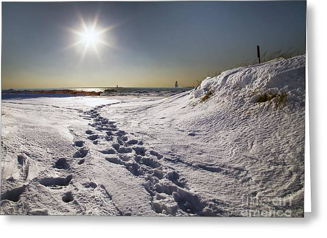 Winter In Ludington Greeting Card