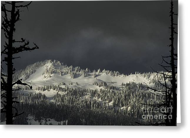 Greeting Card featuring the photograph Winter In North Cascades by Yulia Kazansky