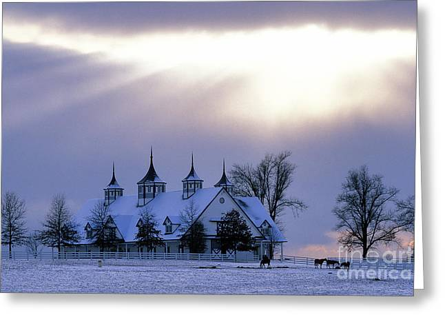 Winter In The Bluegrass - Fs000286 Greeting Card
