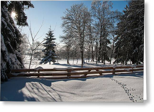 winter in the Harz area Greeting Card by Andreas Levi