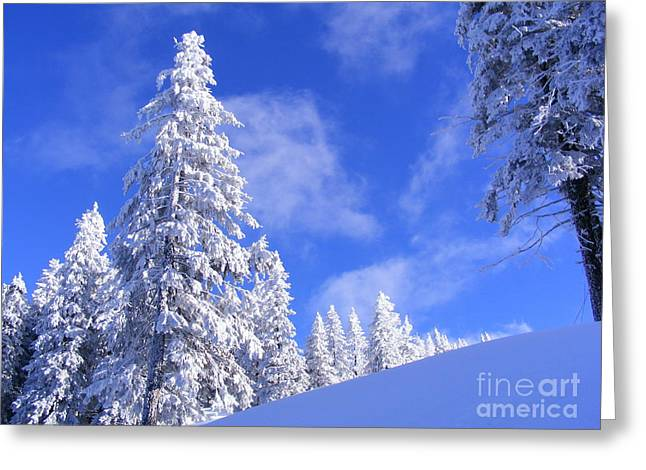 Winter In The Mountain Greeting Card