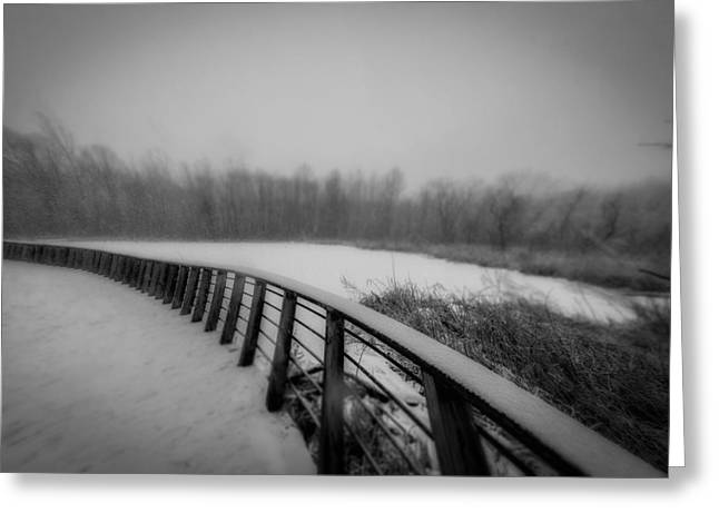Winter At The Park  Greeting Card by Michael Demagall