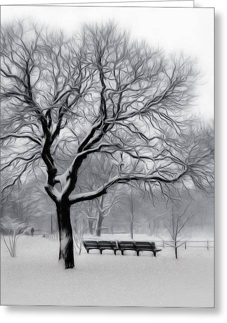Winter In The Park Greeting Card by Nina Bradica