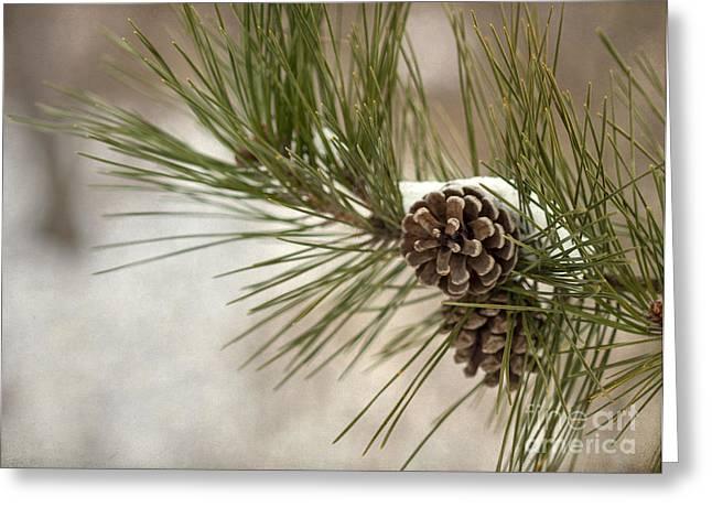Winter Interlude Greeting Card