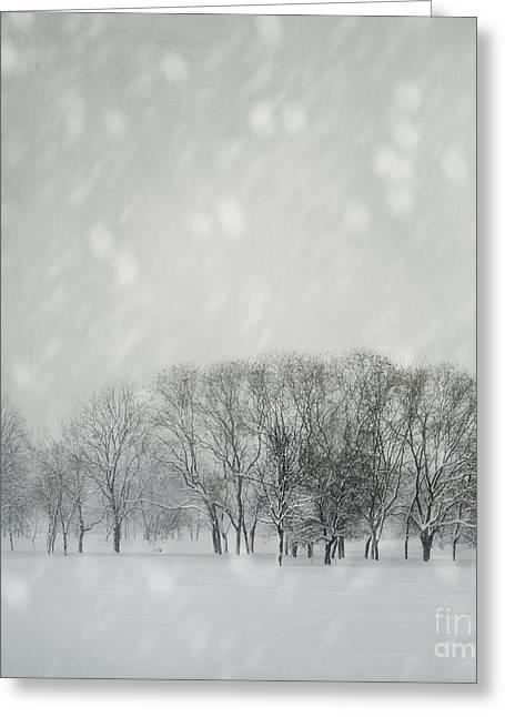 Winter Greeting Card by Jelena Jovanovic